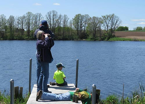 Family viewing waterfowl from dock